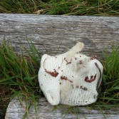 Uist rock disguise